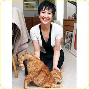 吉川美代子 猫