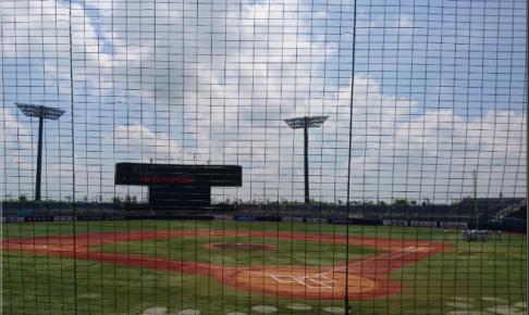 高校野球 球数制限導入 どこの県